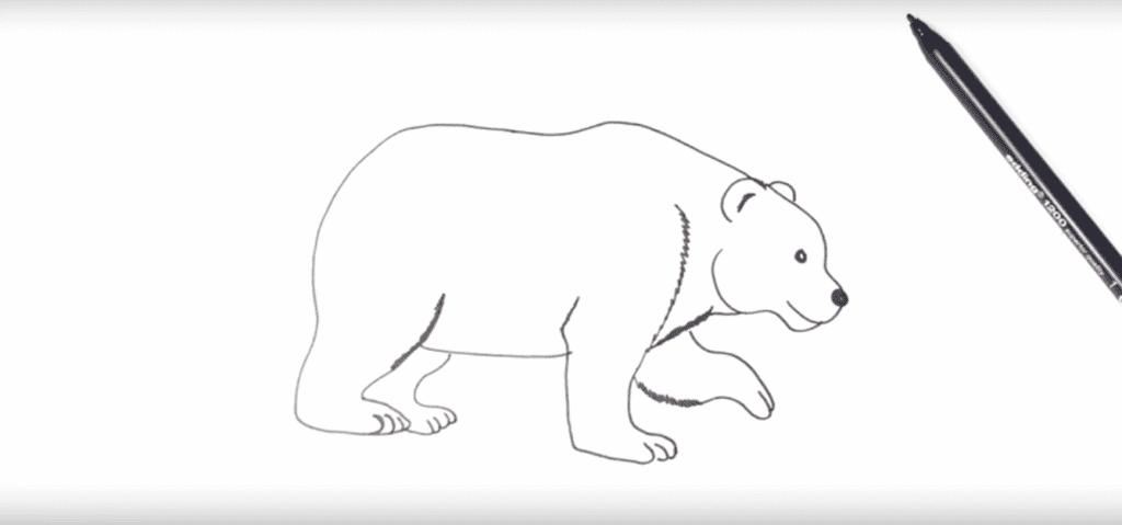 Tekening van een ijsbeer